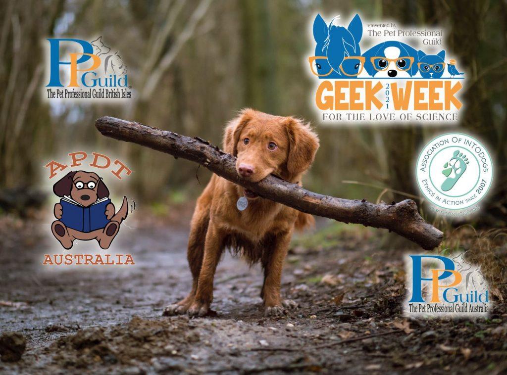 The Pet Professional Guild Geek Week - November 13-17, 2021