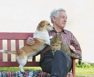 man with pet dog and cat