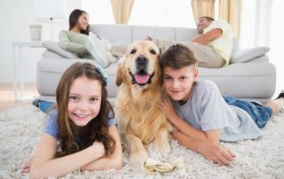 choose a pet whose personality matches your family's